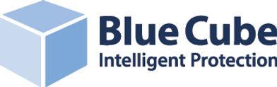 Blue Cube Security.jpg