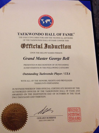 USA_ being honored in the Official Taekw