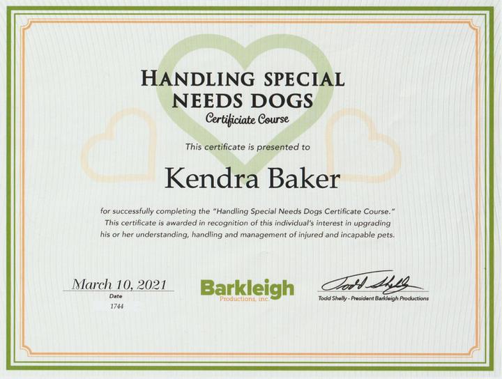 Handling Special Needs Dogs Certificate