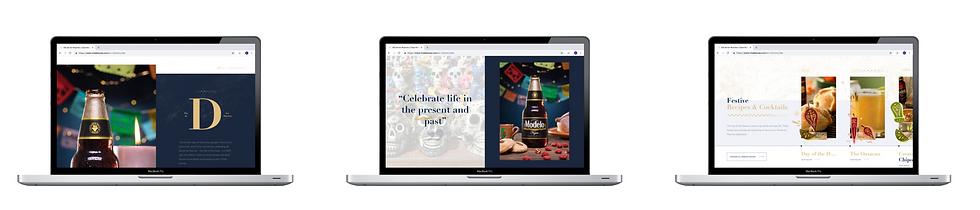 Modelo Celebra la Vida Website
