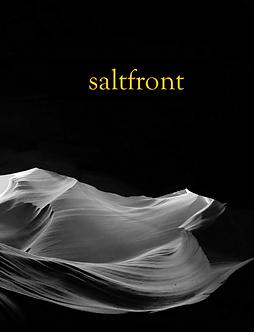saltfront no. 8