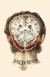 saltfront no. 3