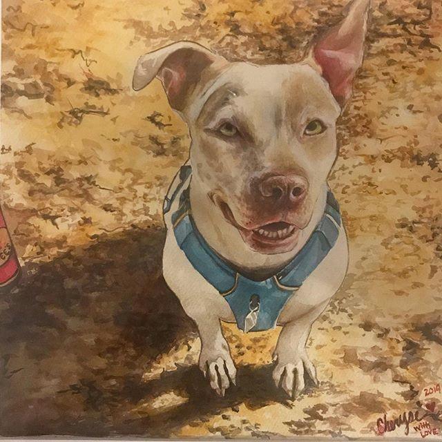 $75-$125 Color Pet Portrait