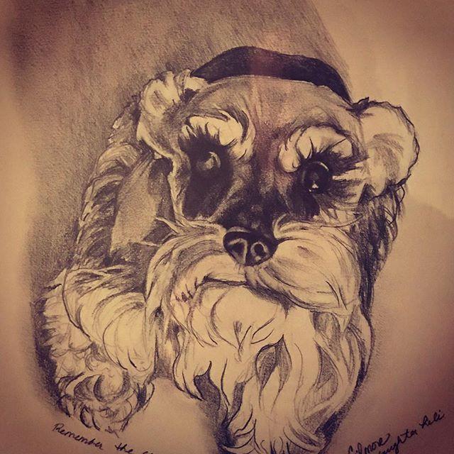 $25-$50 Pet Portrait