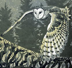 Barn Owl Hedge. Green/gold and grey.