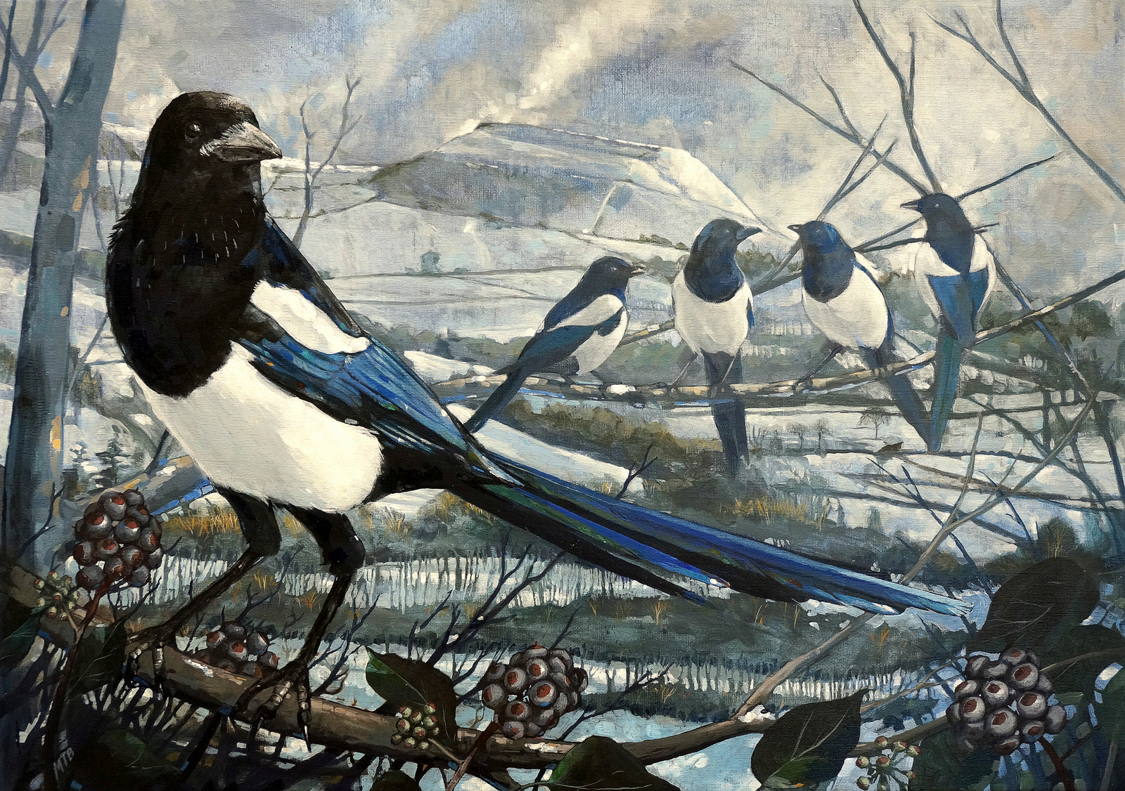 magpie silver