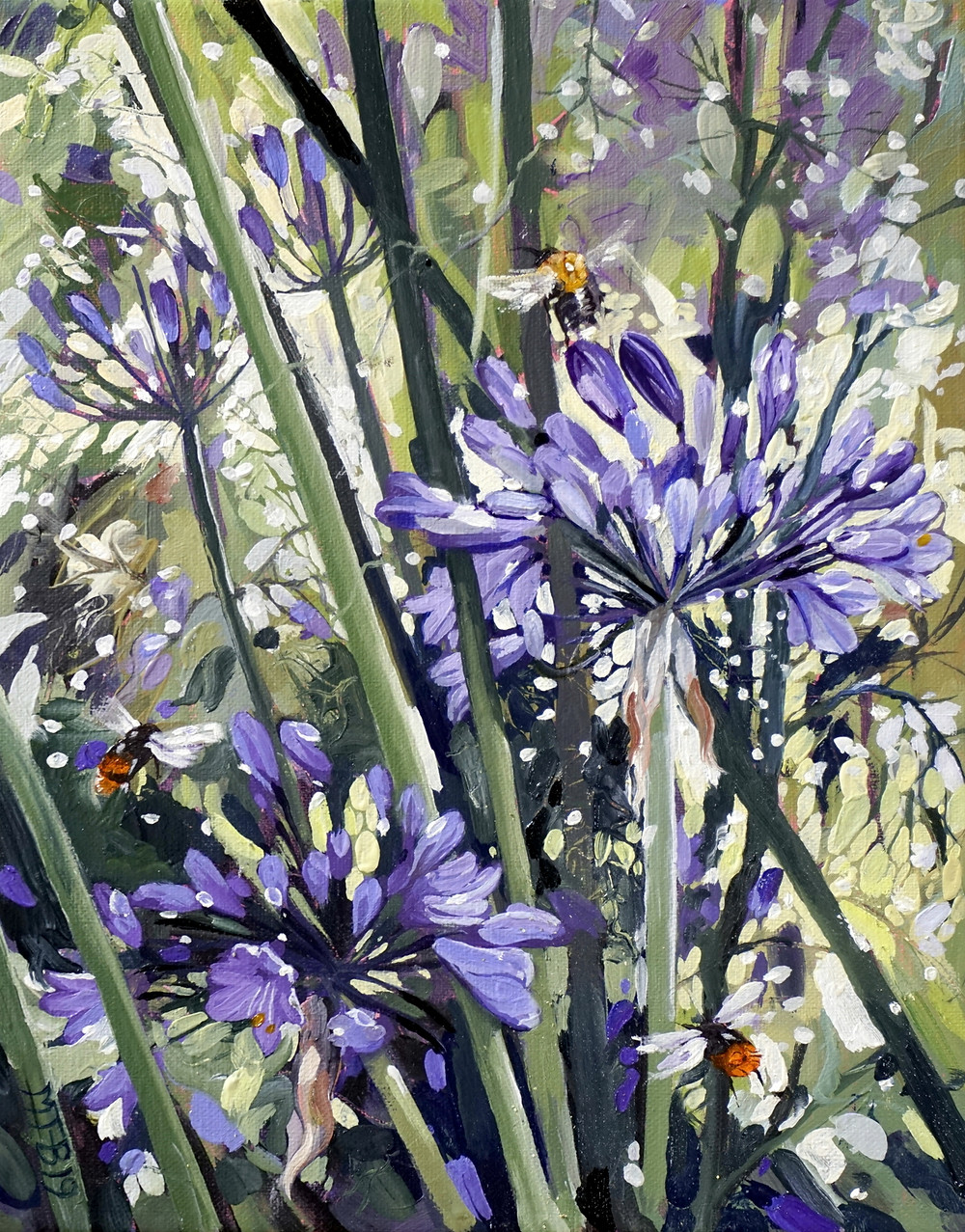 Agapanthus, bumble bees sunshine and rain, oil on linen