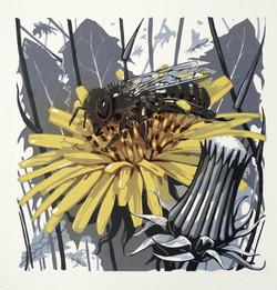 Welsh Honey Bee II
