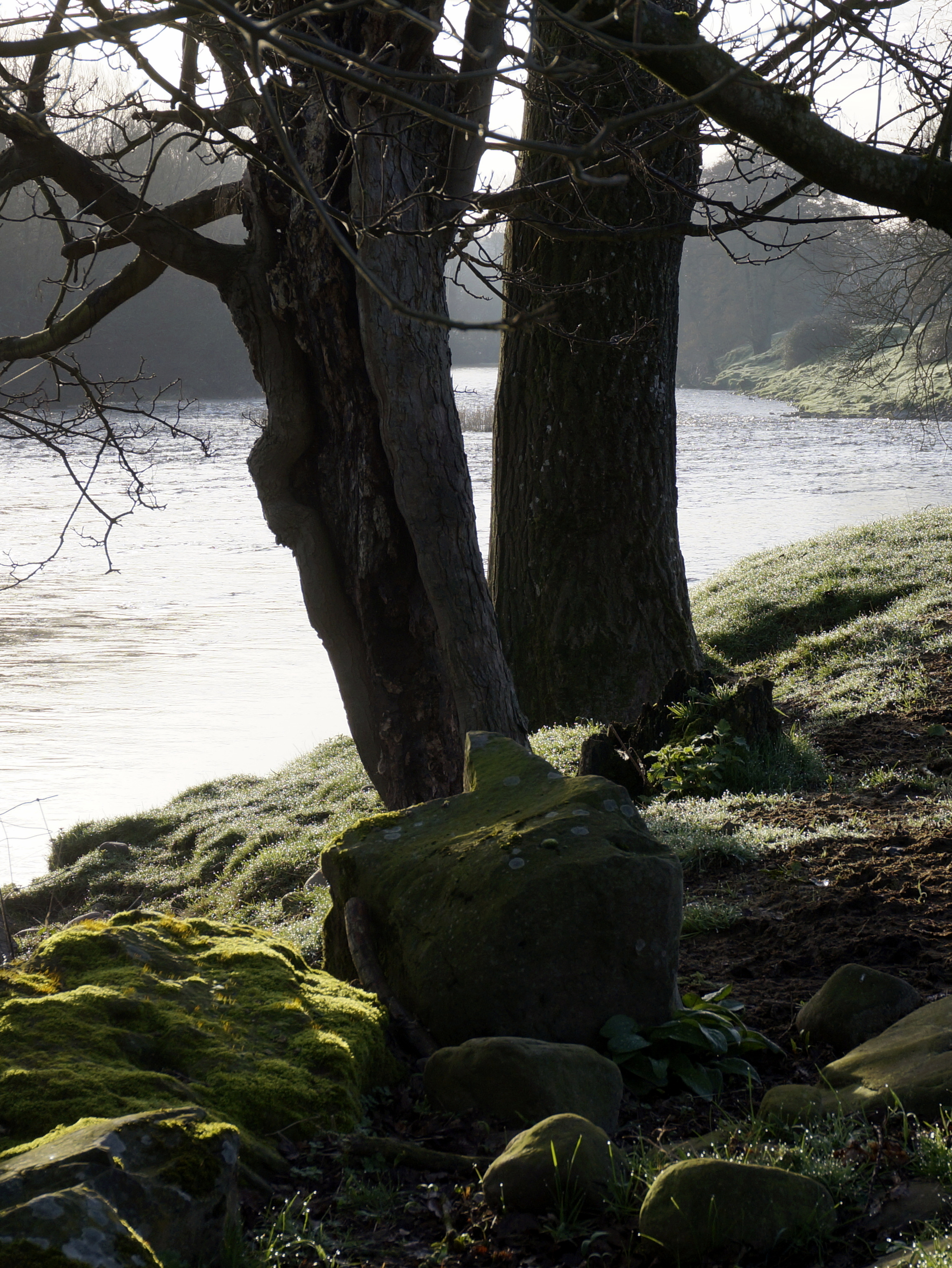 early morning sun on the Usk