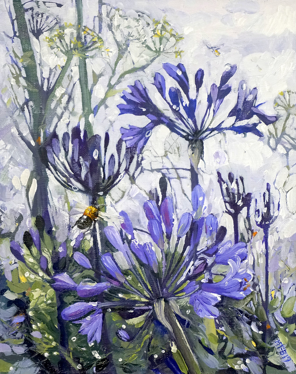 Agapanthus, misty rain, oil on board