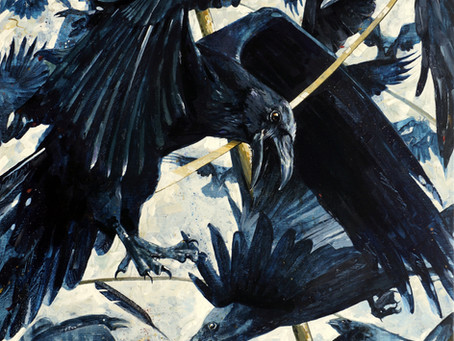 Owain's Ravens