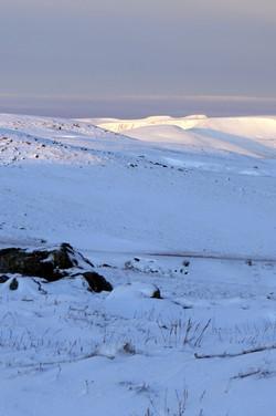 distant Pen y fan in the snow