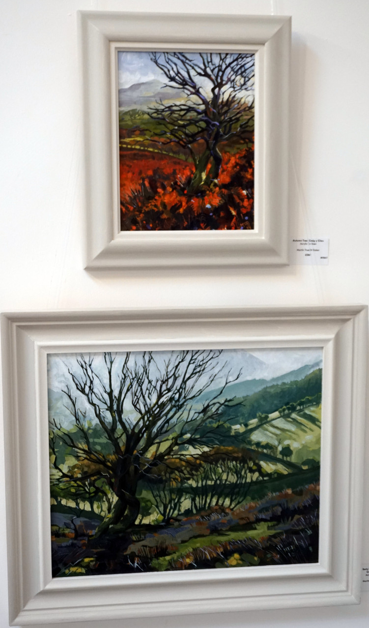 These are both paintings of the same tree (one of my favourites) up above Craig y Cilau. One from the early spring and the other from the Autumn.
