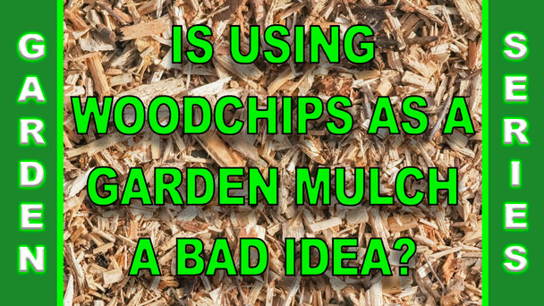 #144 - Is Using Wood Chips As A Garden Mulch A Bad Idea?