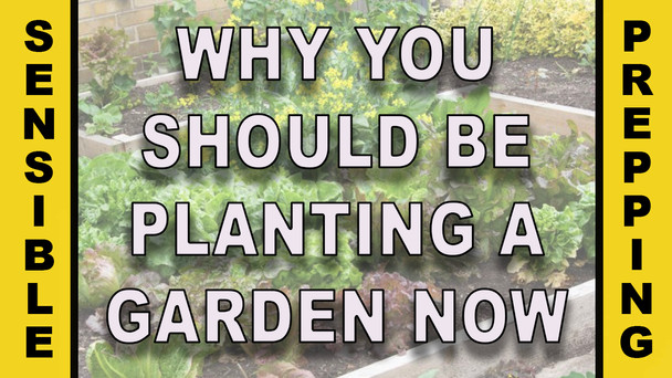 #132 - Why You Should Be Planting A Garden Now