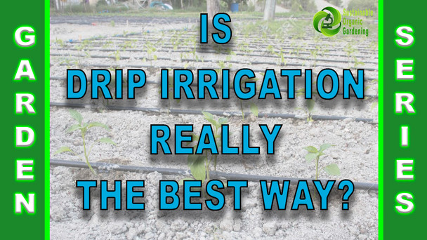 #152 - Is Drip Irrigation Really The Best Way To Water Your Garden?