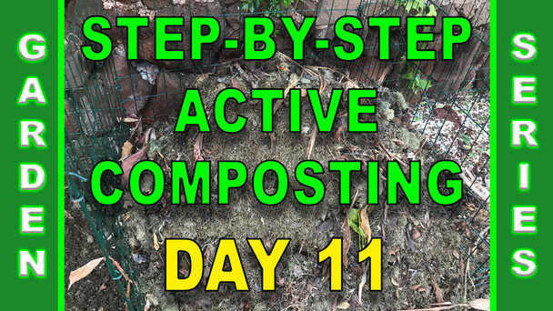 #121 - Step-By-Step Active Composting - Day 11