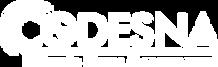 logo-codesna-retina-footer.png