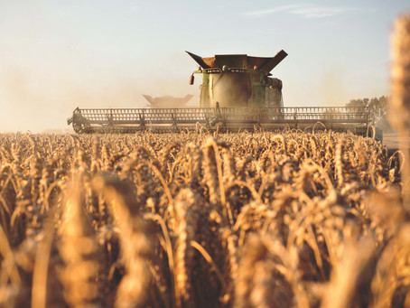 Preparing your Technology for Harvest