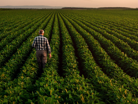 Ep. 37: Artificial Intelligence in Agriculture with Scott Shearer