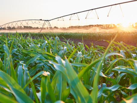 Podcast: 09. Nicholaus Benson - Investigating Irrigation