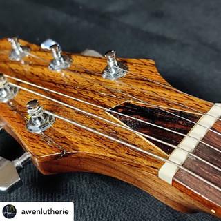 Awen Luthierie Insta 4.JPG
