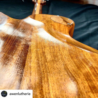 Awen Luthierie Insta 5.JPG