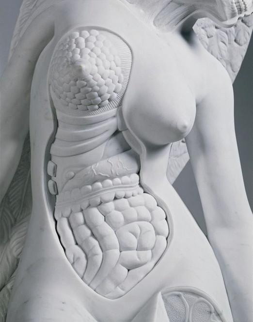 Damien Hirst Anatomy of an Angel 2008 (s