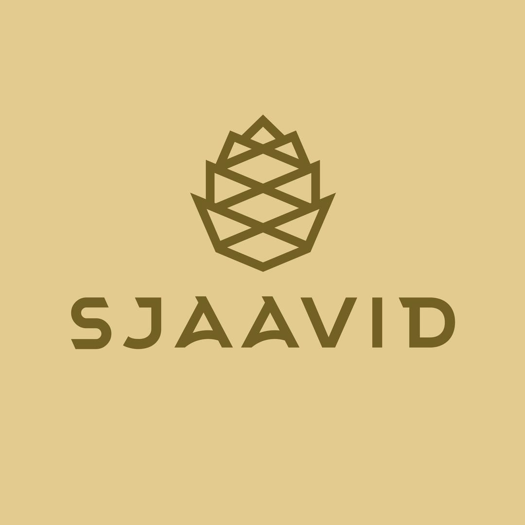 Sjaavid logo