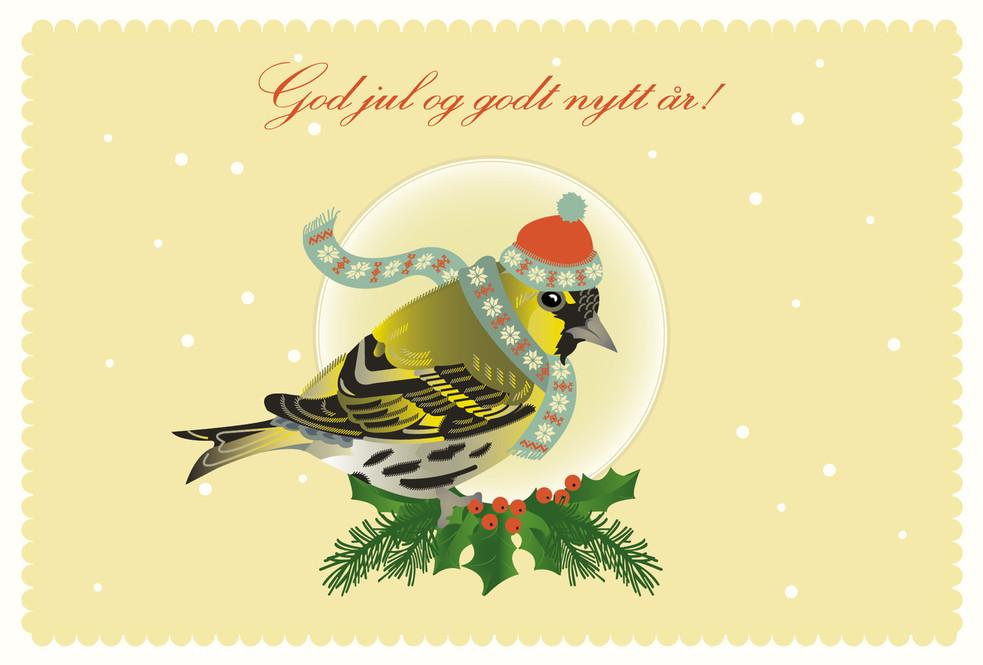Winterbird