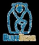 bluebear_edited.png