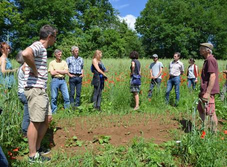 L'agriculture wallonne sera bio, nourricière, diversifiée et en lien avec le consommateur local !