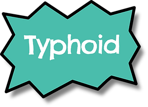 Typhoid bubble.png