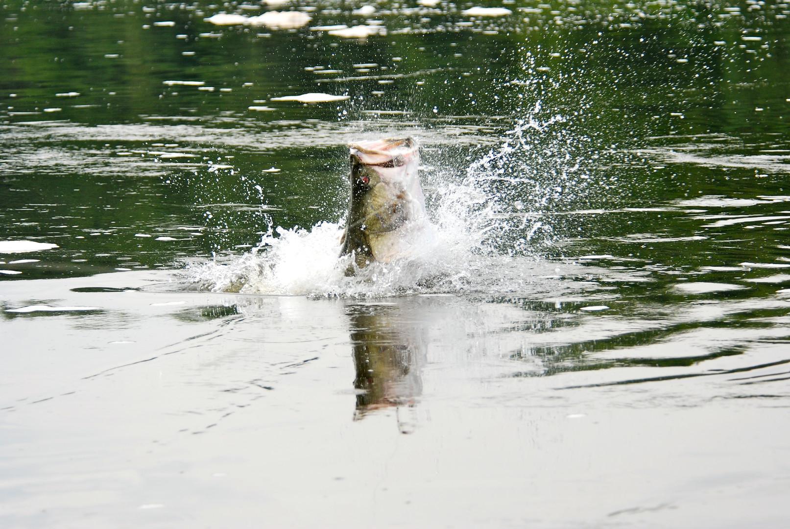 Fishing MFNP  (21).jpg