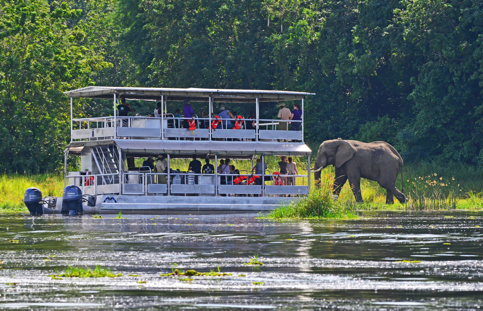 Boat Cruise | Murchison Falls | Wild troopers