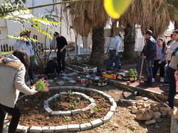 ערוגת פרחים בכפר יאסיף