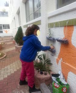 הקמת קיר ירוק