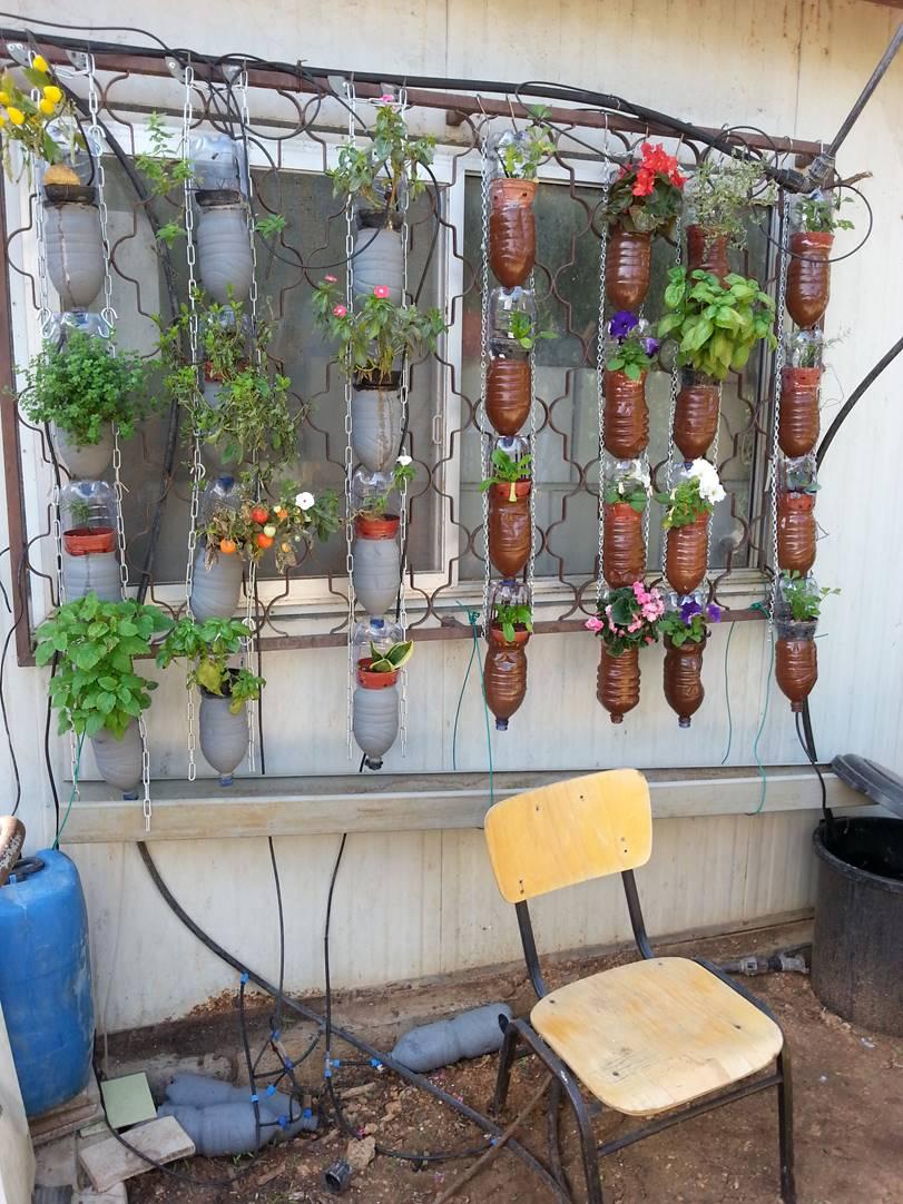 ערוגת חלון-מי השקיה מאיסוף מי גשם