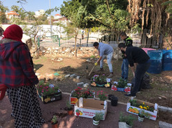 גינה ציבורית בכפר יאסיף