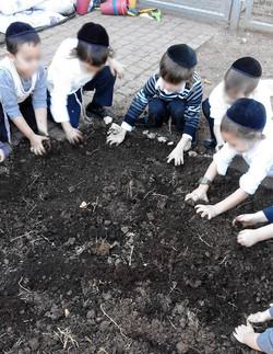 עבודת אדמה - עבודת ידיים