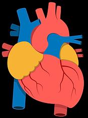 heart 3d.png