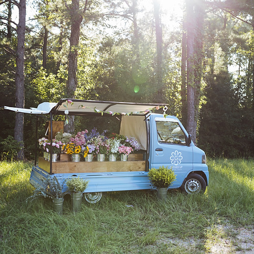 Gussied Up Flower Truck