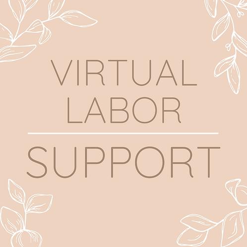 Virtual Labor Support