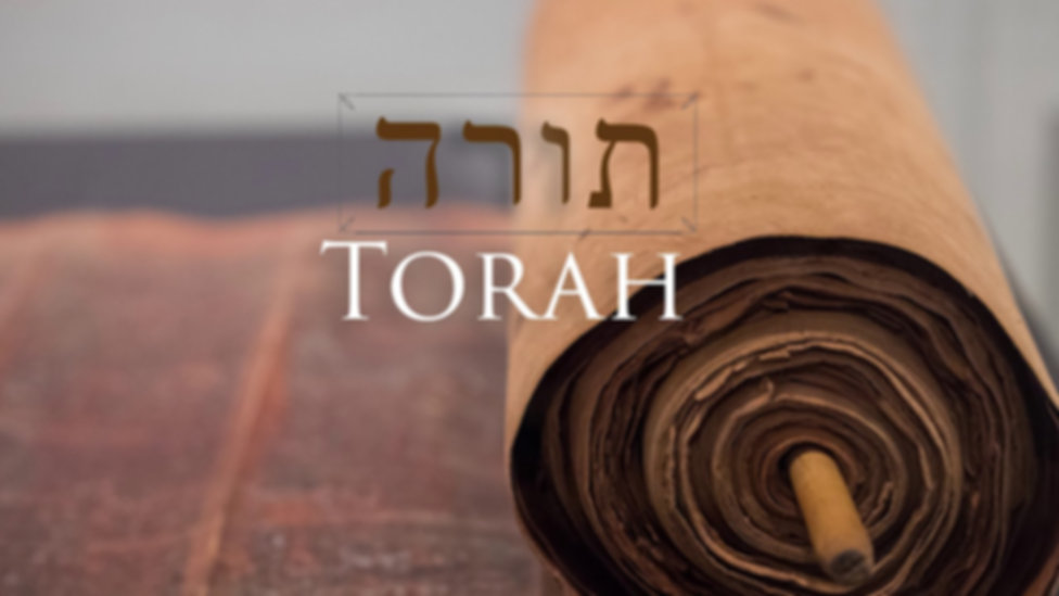 Torah Pic A.jpg