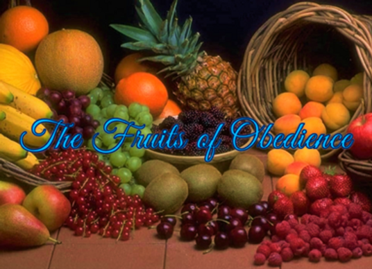 The Path Sabbath School Lesson: The Fruits of Obedience