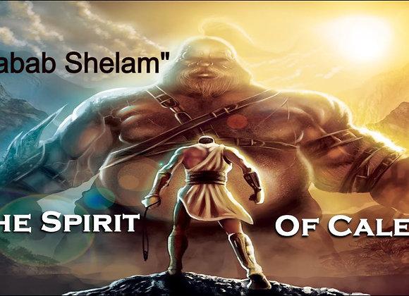 "The Path Sabbath Lesson: Labab Shalem ""Wholeheartedly"""