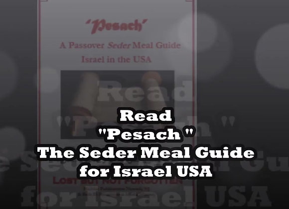 "Pesach ""A Passover Seder Meal Guide"""