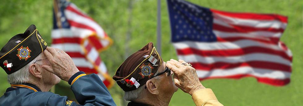 Veterans Soluting 1384405316 RGB SM.jpg