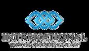 IWM_logo1-removebg-preview.png