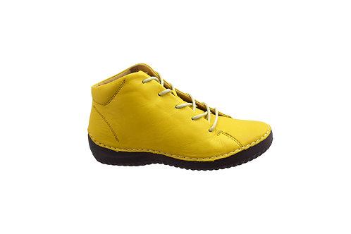 Evergreen -Yellow